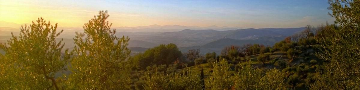 Orizzonte in direzione di Castelnuovo dell'Abate