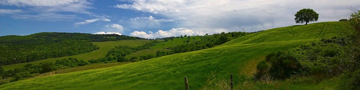 Vista sulle colline nei pressi di Poggio Rosa