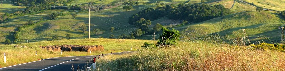 The road, in the Poggi Pelati locality, short before Bindozzino Farm Stay